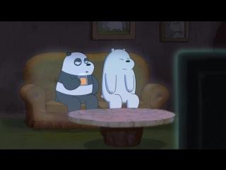 «Вся правда о медведях» на Cartoon Network