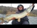Что подарить рыбаку на Новый Год с AliExspress?