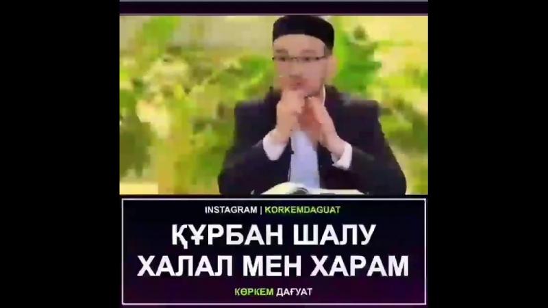 Құрбан шалу Халал мен Харам