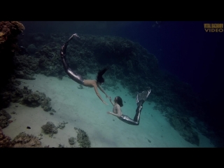 World champion Aleksey Molchanov Red Sea Dahab Egypt freediving