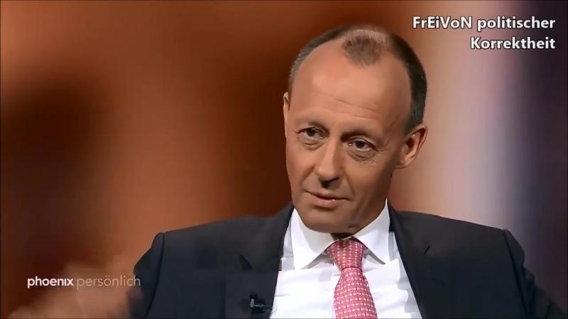 AfD hat sich etabliert weil CDU nicht mehr zur polit Mitte integrieren will Merz CDU HD