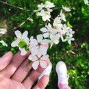 Анастасия Шпагина фото #42