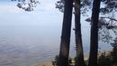 Карельская Застава. Берег Онежского озера. Карелия. Лето