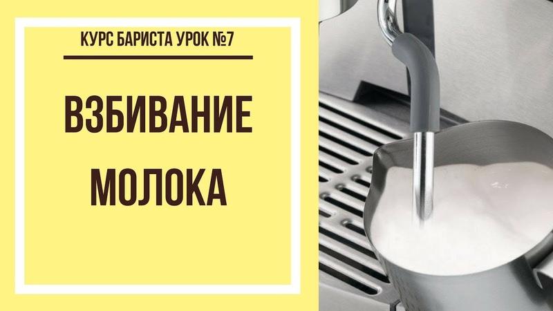 Взбивание молока Курс бариста урок №7