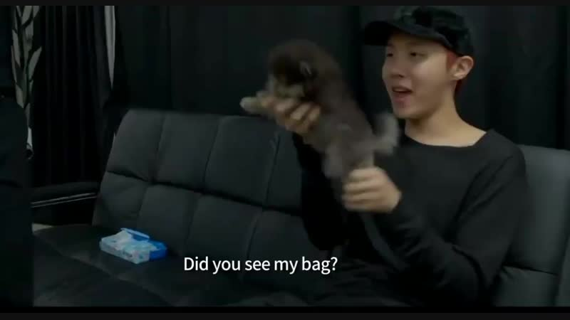 Hoseok playing with yeontan is the most beautiful thing you will see today ᵈᶤᵈ ʸᵒᵘ ˢᵉᵉ ᵐʸ ᵇᵃᵍ