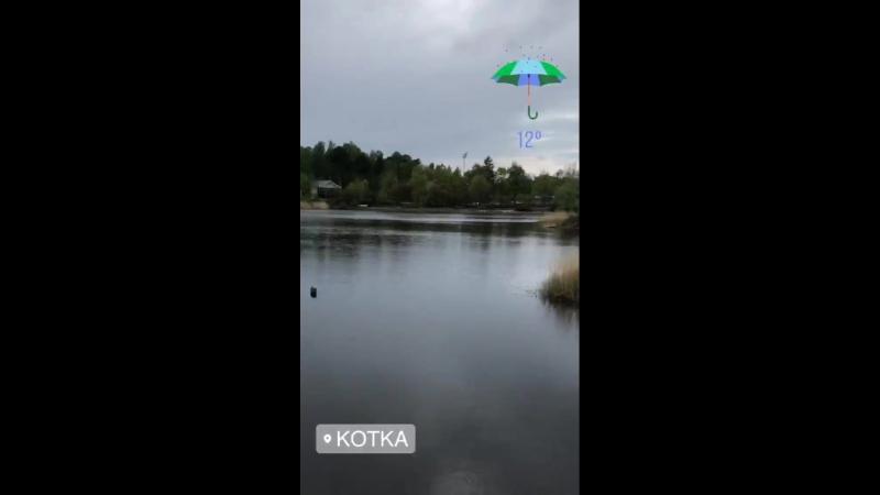 Погодка ... тюлень...🌂🌂🌂ВладимирДантес dantestrip travel Kotka Finland