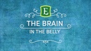 The Brain in the Belly - Video with Emily Rosen