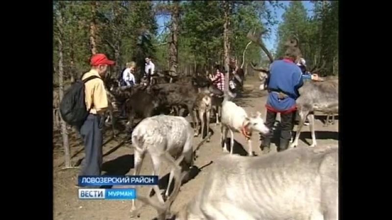 Члены заполярной организации Всероссийского общества инвалидов побывали в Саамской деревне.