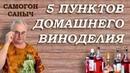 5 пунктов ДОМАШНЕГО ВИНОДЕЛИЯ, которые ДОЛЖЕН ЗНАТЬ КАЖДЫЙ!