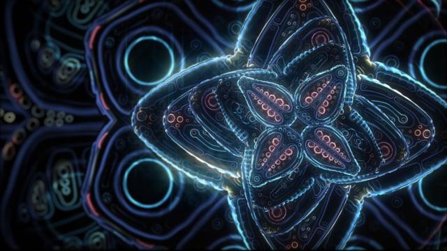 Cosmic Flower Unfolding