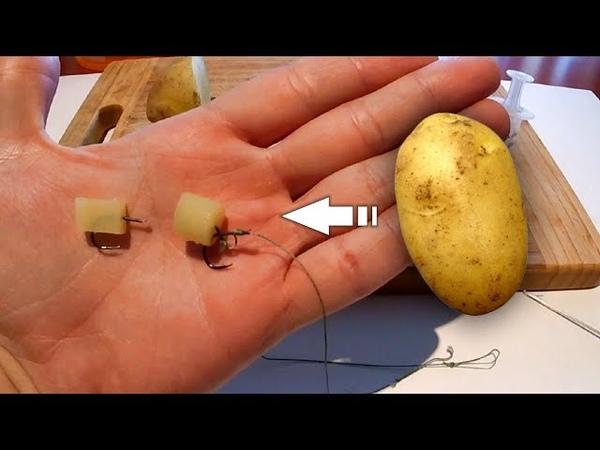 Как насадить картошку на крючок или волос   Формовка   Пеллетс   Рыбалка   Fishing