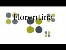 Кухонная мойка Florentina тесты на прочность