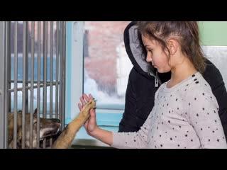 Видеовизитка Валерия Карташовой для конкурса