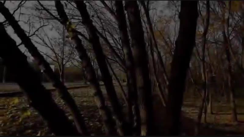 Fat Frumos [2012] [Film Moldovenesc]