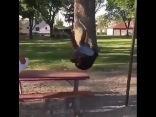 трюкач на качели