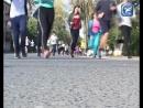 Кросс наций 2018 рекордное количество сокольчан пробежали по главной улице города бумажников