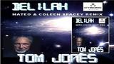 T.O.M. J.O.N.E.S. - DELILAH ( Spacey Remix )