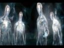 ИНАЯ форма жизни до сих пор была засекречена.БЛИЗНЕЦЫ.Уникальное исследование на орбите.Тайны Чапман