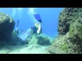 Diving Fethiye
