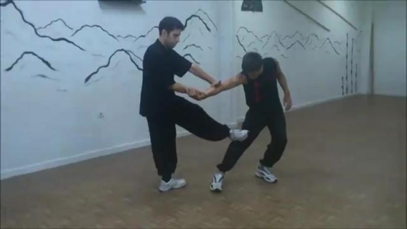 Roberto Rodríguez Carrasco - Choy Lee Fut Kung Fu en Salamanca