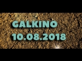 Кантри-кросс в Галкино 10 августа 2018