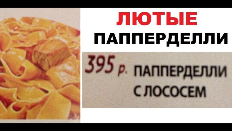Лютые приколы Котик взял в заложники СОБАКУ