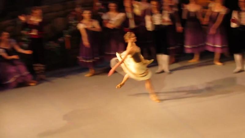 Laurencia (2)