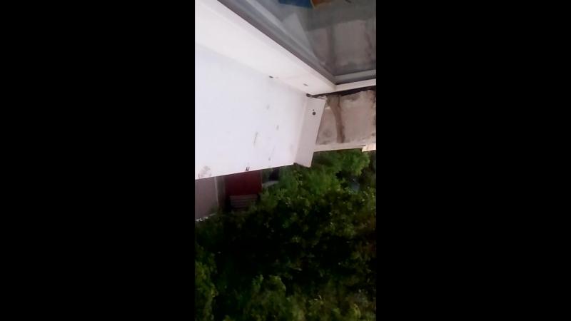 Соловьи весной 18 г под окном.....Громко, но..искажено видео