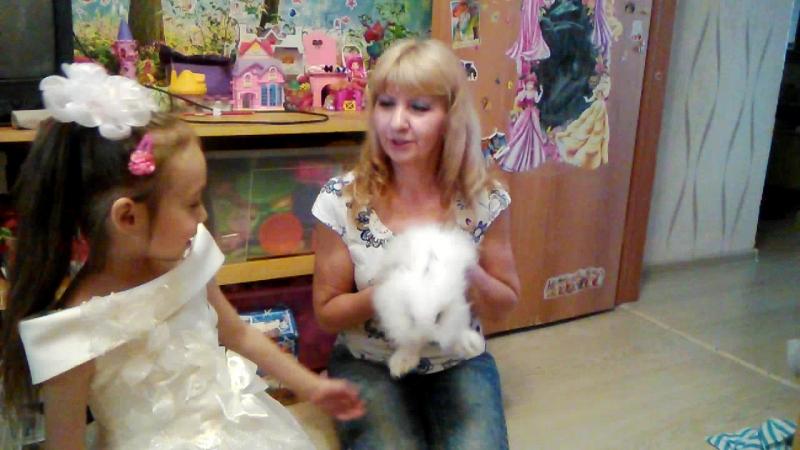 В тумбочке с игрушками я нашла настоящего кролика !
