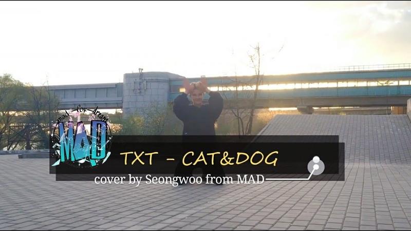 DANCE COVER TXT - CATDOG by Seongwoo (short ver.)