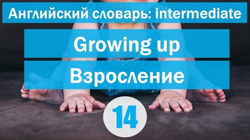 Growing up || Взросление || Английский словарь: уровень INTERMEDIATE || Урок 14