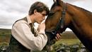 Боевой конь(2011)