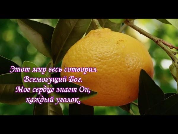 «Песенка Деборы» — Н.Гельфанд, испол. А.Огиенко и Дебора