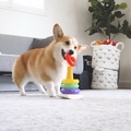 Instagram on Instagram Video by @lacorgi Hello, world! Meet todays #WeeklyFluff Geordi (@lacorgi), a 5-year-old Pembroke Welsh corgi with a spe...
