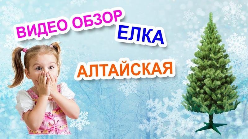 Искусственные елки в Тольятти. Видео обзор елка Алтайская