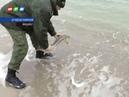Крымские браконьеры оштрафованы на 1 5 млн рублей
