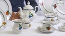Посуда из белого фарфора Мэри-Энн Mary-Anne Фруктовый сад 080H Leander, Чехия