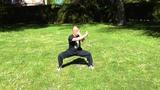 Kung Fu adultes