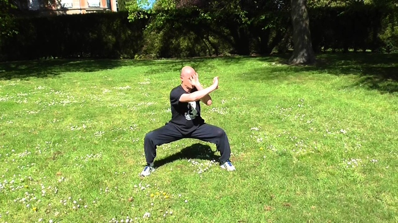 Kung Fu adultes à Reims - Tao du tigre