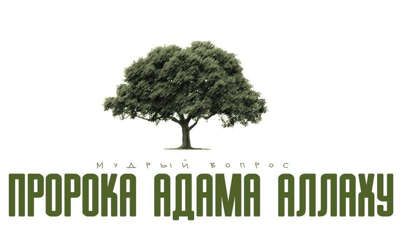 Мудрый вопрос Пророка Адама Аллаху (Юша Эванс)