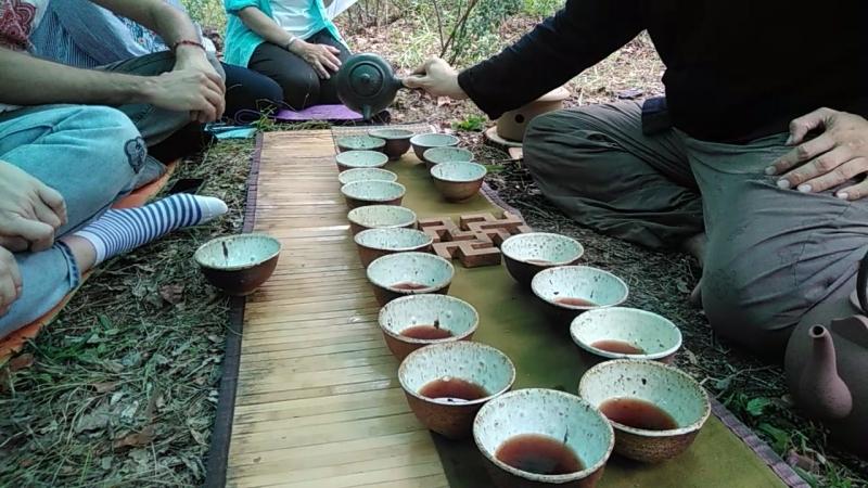 Чай из чаш в лесу