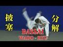 WADO - RYU kata BASSAI / Bunkai 和道流 形 分解 (披塞)