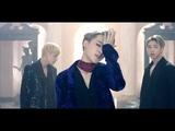 BTS Blood Sweat &amp Tears (choreography version)