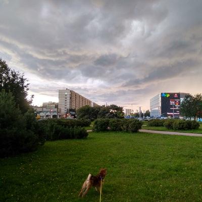 Артём Оськин