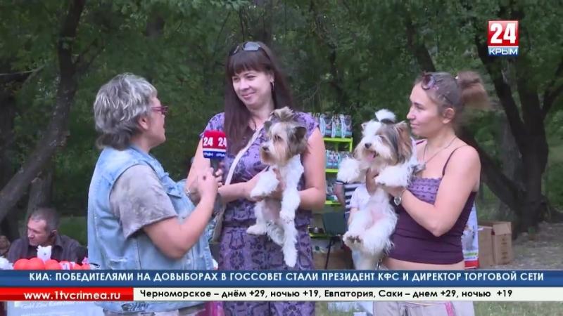 Самые верные защитники крымский Клуб полицейских собак провёл традиционный кинологический праздник в Симферополе