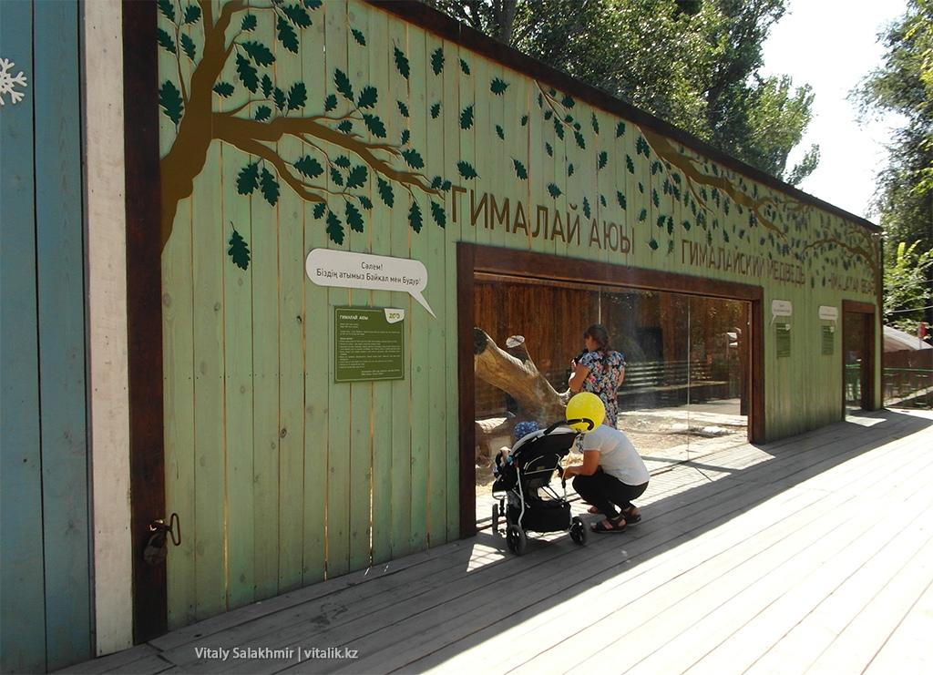 Клетка гималайского медведя в зоопарке Алматы 2018