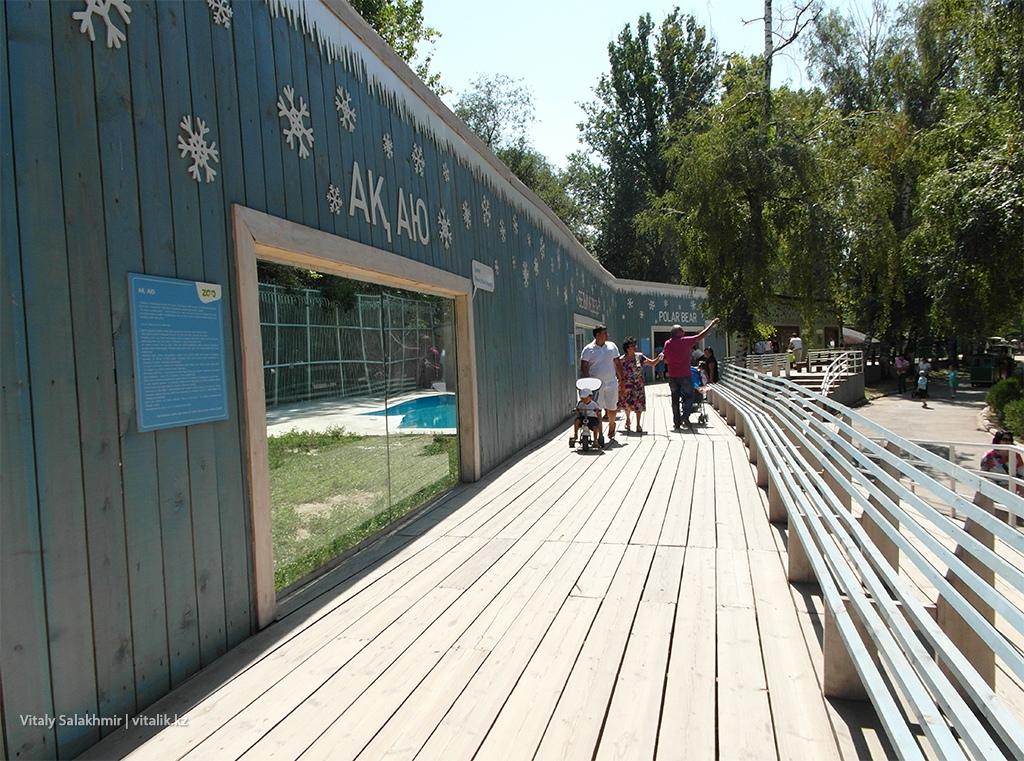 Медведи в зоопарке Алматы 2018
