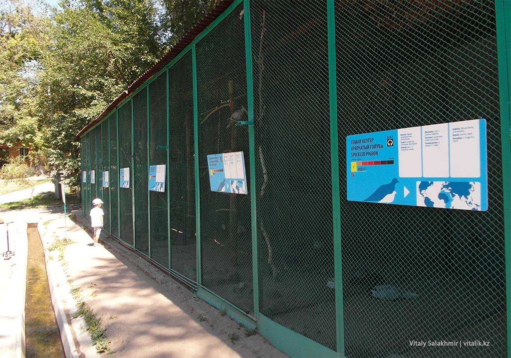 Питомник с птицами в зоопарке Алматы 2018
