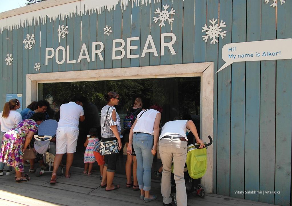 Клетка полярного медведя, зоопарк Алматы 2018