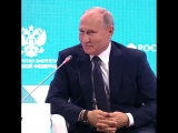 Путин назвал реакцию на ЧП в Эймсбери бредом
